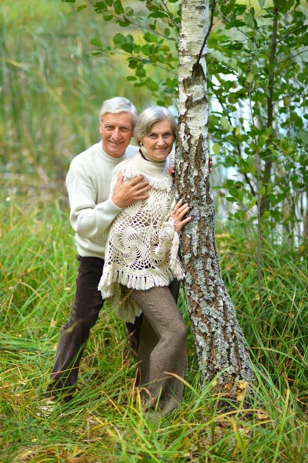 Portret van het gelukkige hogere paar stellen in de herfstbos royalty-vrije stock fotografie