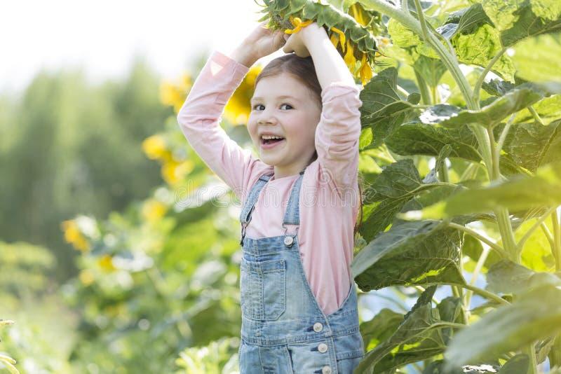 Portret van het gelukkige meisje spelen met zonnebloem bij landbouwbedrijf stock afbeelding