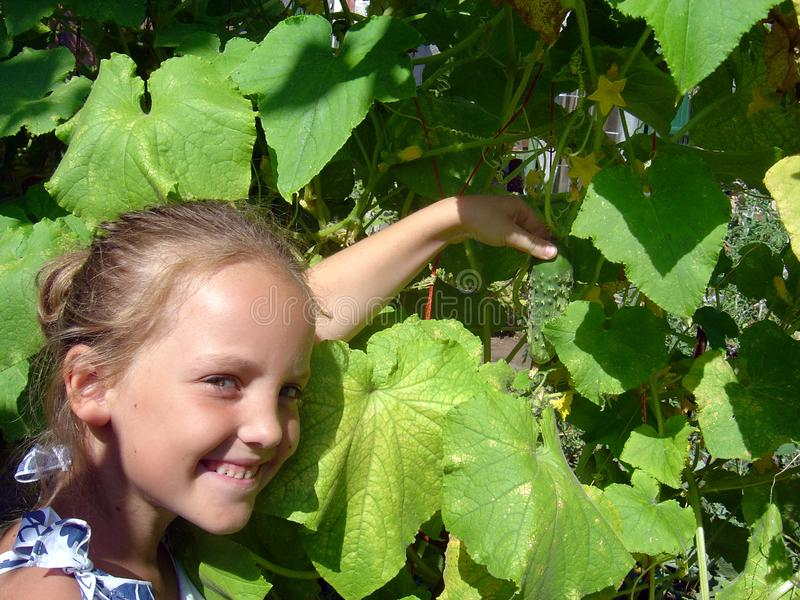 Portret van het glimlachende meisje met komkommer in de zomertuin royalty-vrije stock foto