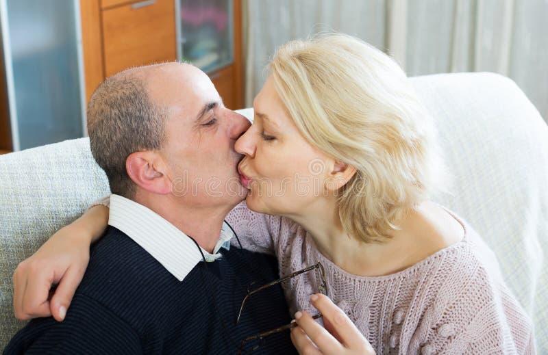 Portret van het houden van van bejaarde echtgenoten stock fotografie