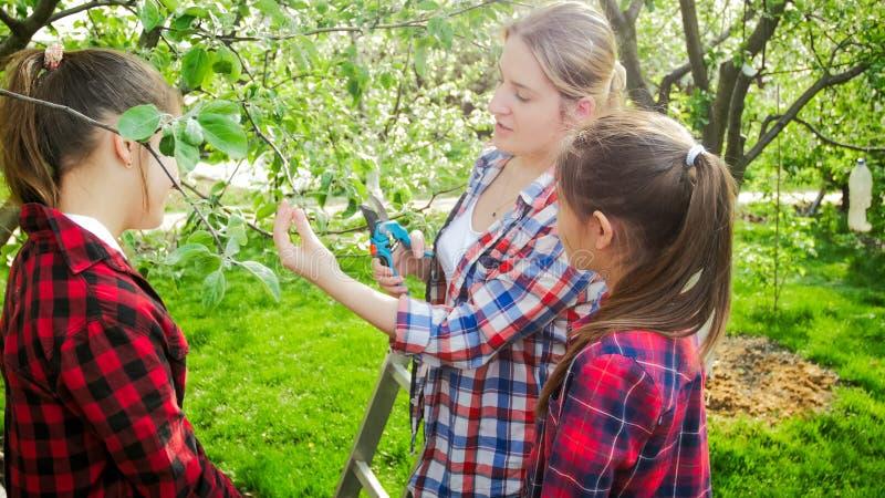 Portret van het jonge moederonderwijs die haar kinderen in boomgaard snoeien stock afbeelding