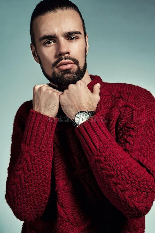 Portret van het knappe lumbersexual model van manier modieuze hipster gekleed in het warme rode sweater stellen in studio royalty-vrije stock afbeeldingen