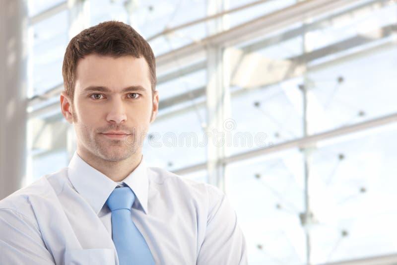 Portret van het knappe zakenman glimlachen stock afbeeldingen