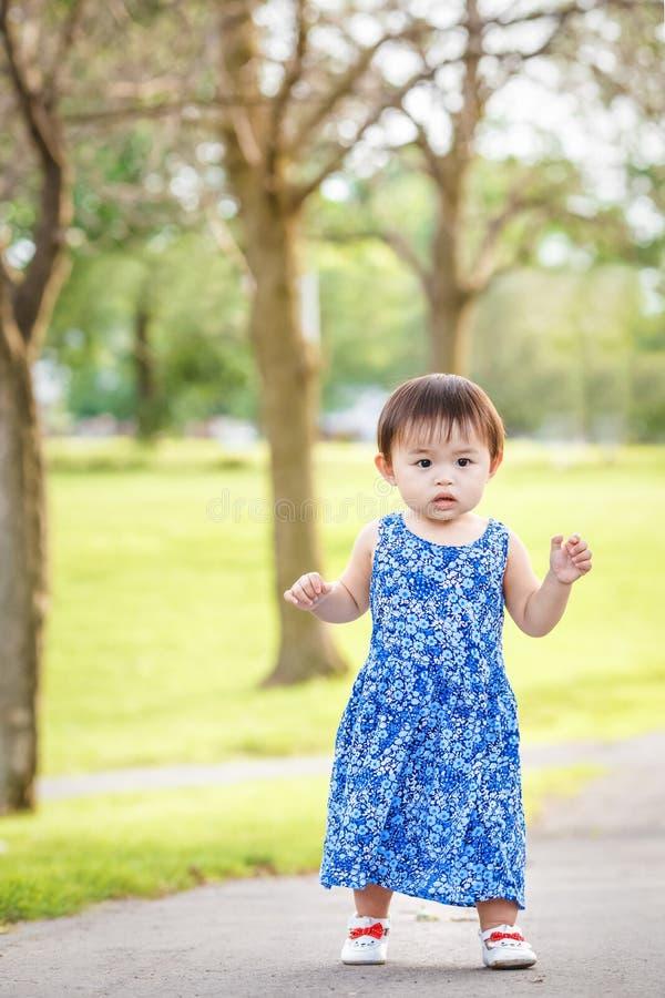 Portret van het leuke Aziatische kind spelen in park stock afbeeldingen