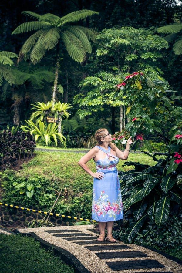 Portret van het mooie vrouw stellen onder bloeiende Aziatische bloemen op het eiland van Bali, Indonesië stock foto's