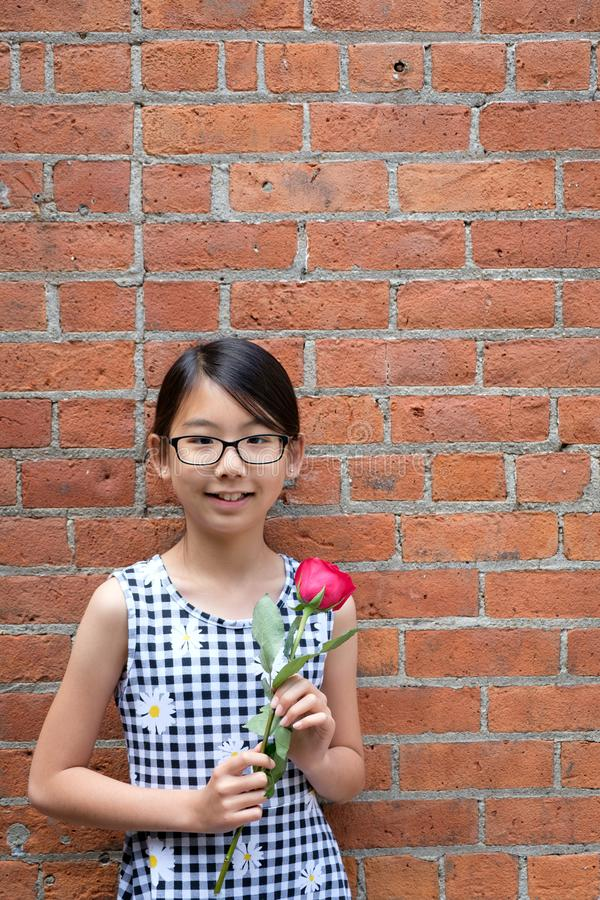 Portret van jong Aziatisch meisje met rode roze bloem tegen rode bakstenen muur stock fotografie