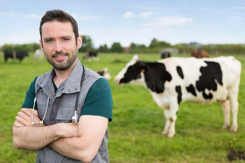 Portret van Jonge aantrekkelijke veterinair in een weiland met koeien royalty-vrije stock afbeelding