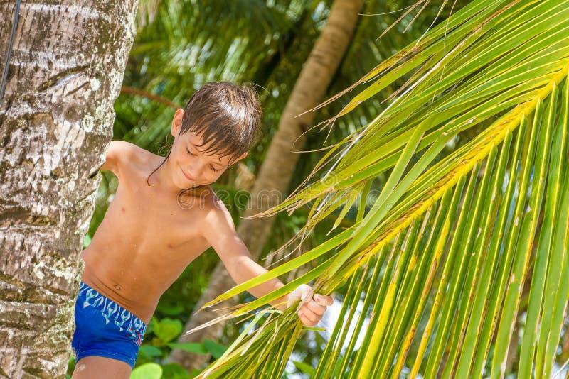 Portret van jonge gelukkige kindjongen op tropische achtergrond stock afbeelding