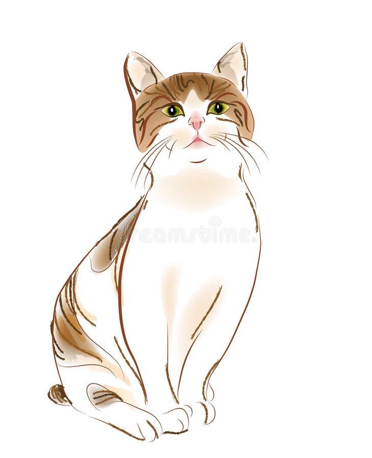 Portret van kat stock illustratie