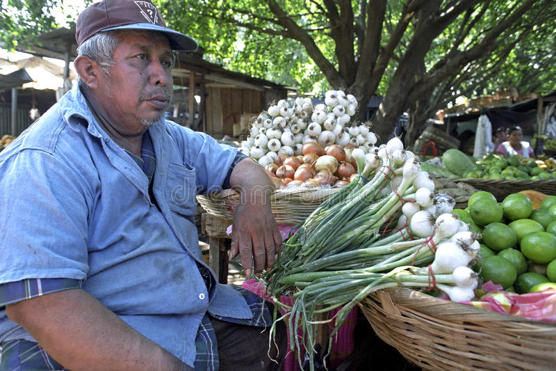 Portret van Latino marktverkoper in marktkraam royalty-vrije stock afbeeldingen