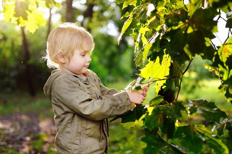 Portret van leuk gelukkig weinig jongen die pret in de zomerpark hebben na regen stock afbeelding