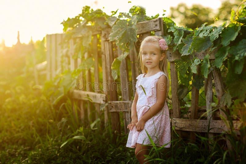 Portret van leuk meisje dichtbij houten omheining in het dorp op zonsondergang midzomer stock foto's