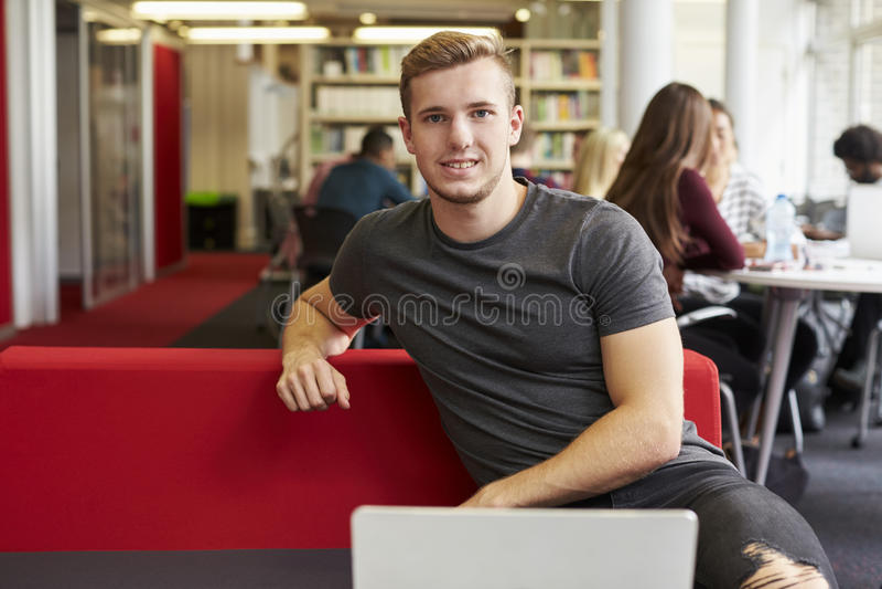 Portret van Mannelijke Universitaire Student Working In Library royalty-vrije stock fotografie