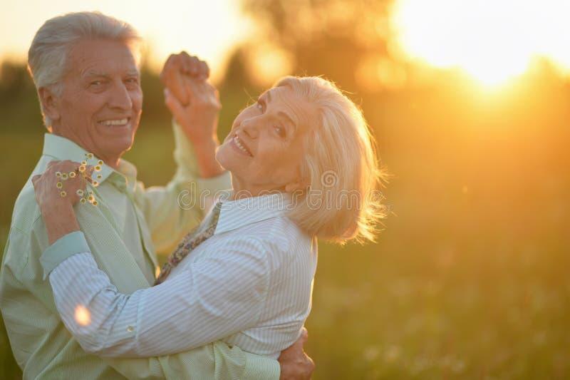 Portret van mooi hoger paar die in het de zomerpark dansen stock fotografie