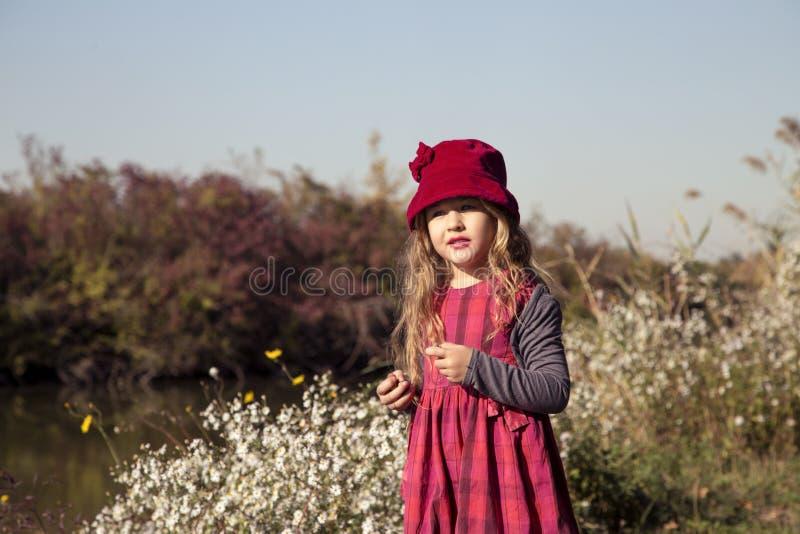 Portret van mooi meisje in aard stock fotografie