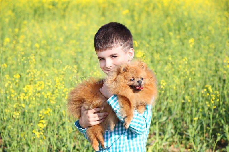 Portret, van mooi weinig jongen en zijn pomeranian hond op het gele gebied royalty-vrije stock fotografie