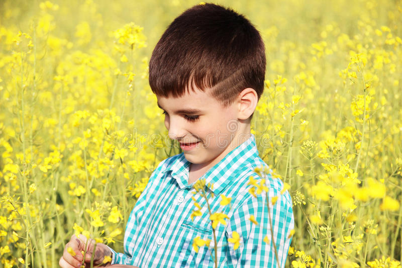 Portret, van mooi weinig jongen op het gele gebied royalty-vrije stock afbeeldingen