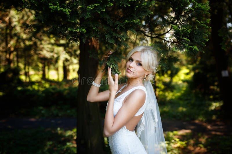 Portret van mooie bruid stock afbeelding