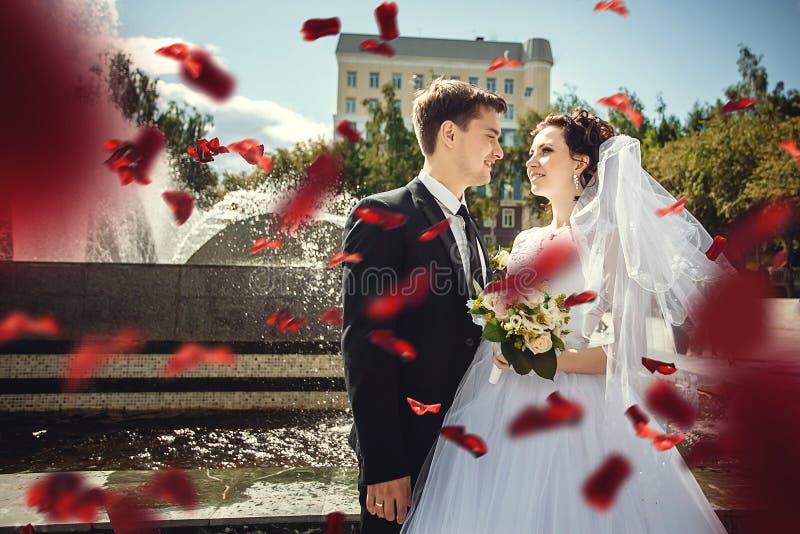 Portret van mooie bruid en bruidegom op de achtergrond van rode roze bloemblaadjes royalty-vrije stock fotografie