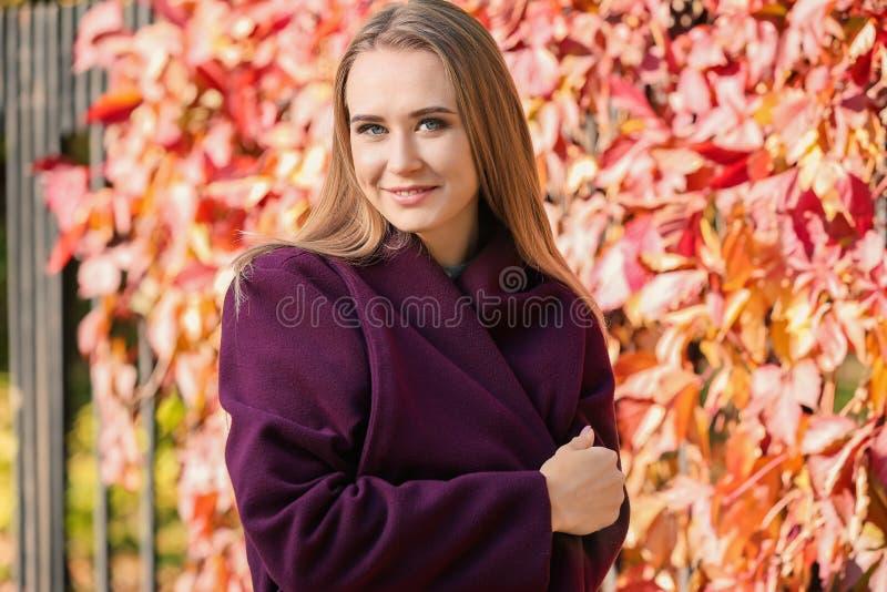 Portret van mooie jonge vrouw in de herfstpark royalty-vrije stock afbeelding