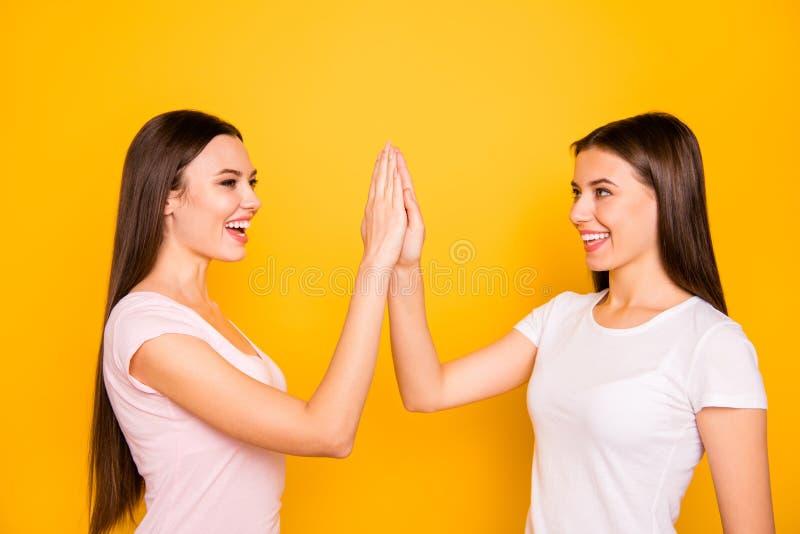 Portret van mooie leuke charmante mooie aantrekkelijke vrolijke vrolijke optimistische positieve recht-haired dames stock afbeelding