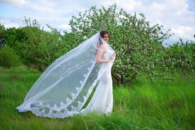 Portret van mooie vrouw in huwelijkskleding met sluier in het bloeien stock foto