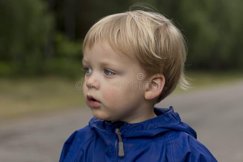 Portret van nadenkend weinig jongen in het park, aanbiddelijke peuter in in openlucht het spelen royalty-vrije stock fotografie