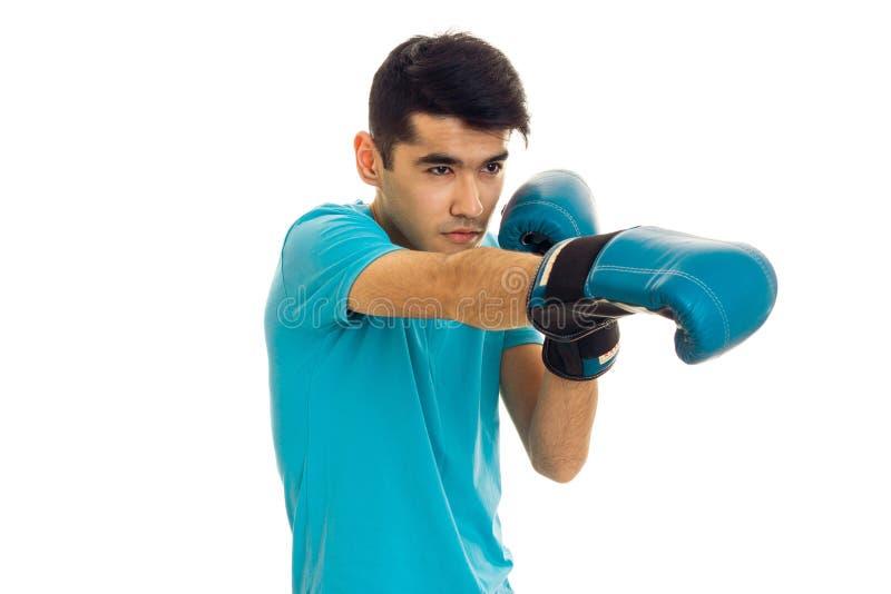 Portret van sterke donkerbruine sportenmens het praktizeren doos in blauwe die handschoenen op witte achtergrond wordt geïsoleerd stock foto's