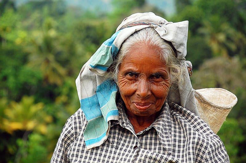 Portret van Tamil Arbeider van de Thee stock foto