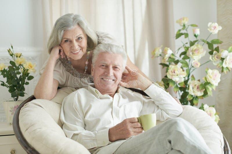 Portret van twee bejaarde mensen die thuis met thee rusten stock afbeelding