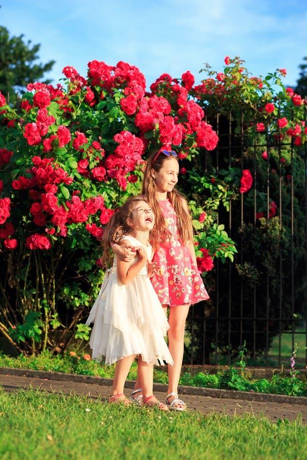 Portret van twee gelukkige meisjes die omhelzen en lachen op het zonnige zomerpark royalty-vrije stock afbeelding