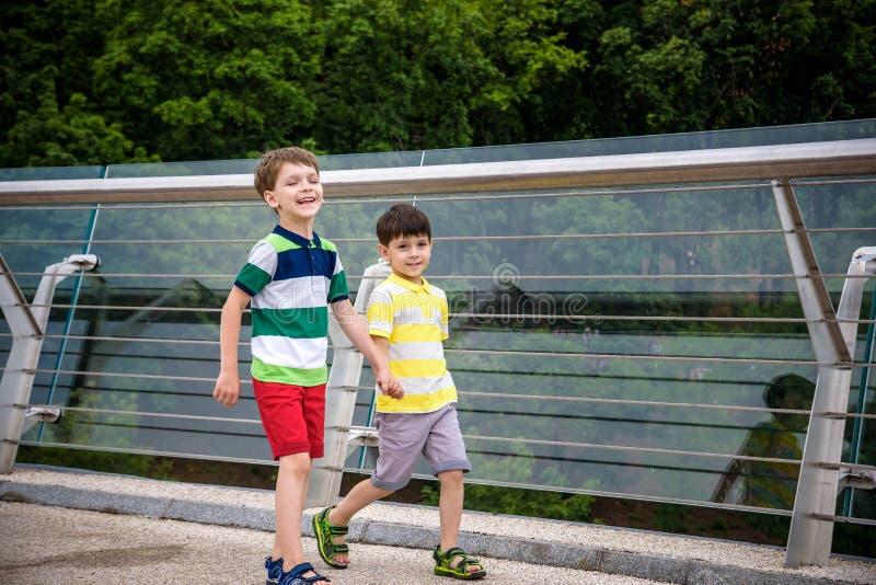 Portret van twee jongensjong geitje een gang over een brug en neer het kijken, kind die buiten in zonnige dag, Jonge jongens lope stock foto's