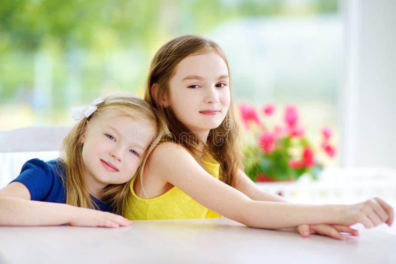Portret van twee leuke kleine zusters thuis op mooie de zomerdag stock foto's