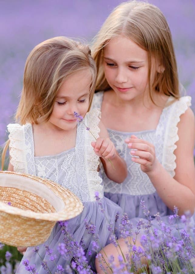 Portret van twee zusters in een lavendel royalty-vrije stock foto's