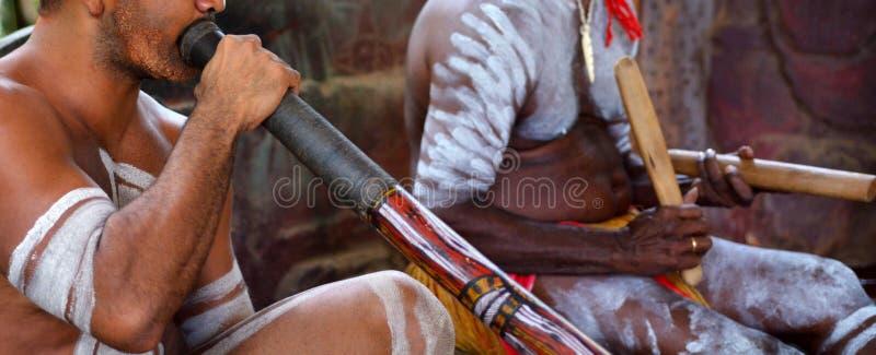 Portret van van het de mensenspel van Yirrganydji de Inheemse Inheemse muziek stock afbeelding