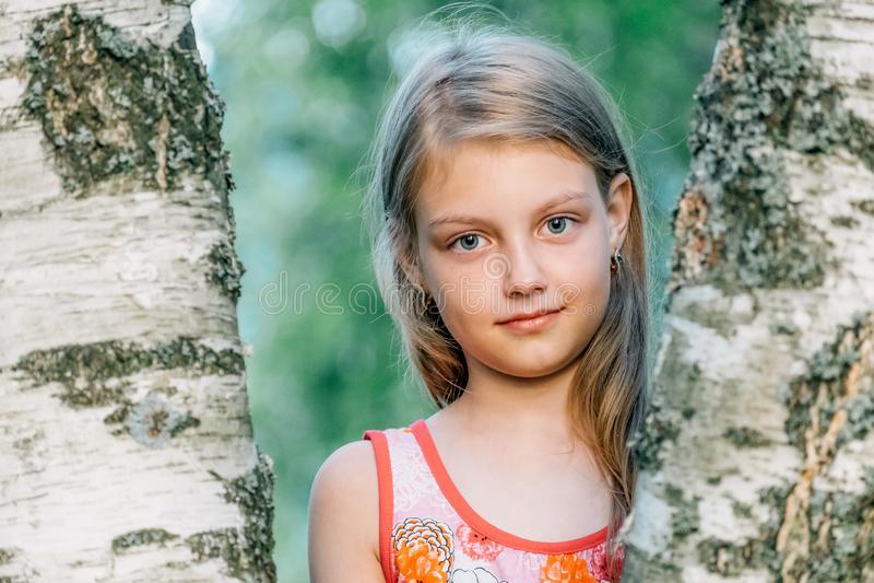Portret van vrolijk leuk meisje dichtbij de berk stock afbeeldingen