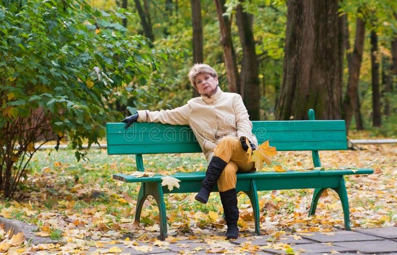 Portret van vrouw in de herfstpark stock foto