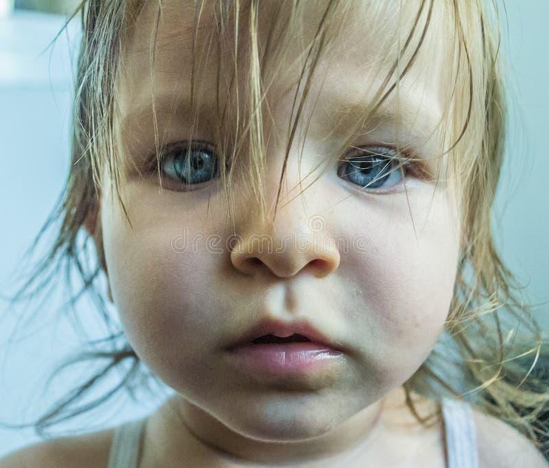 Portret van weinig blauw oogmeisje stock afbeeldingen