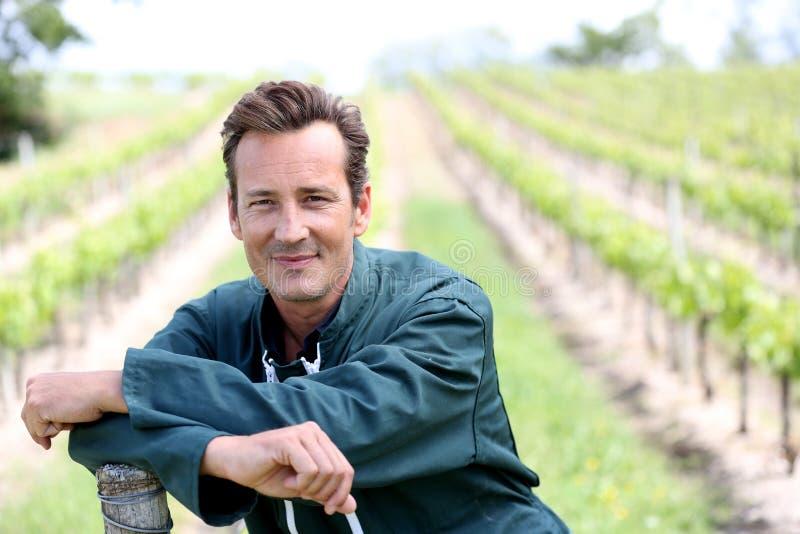 Portret van wijnbouwer in wijngaarden stock foto's