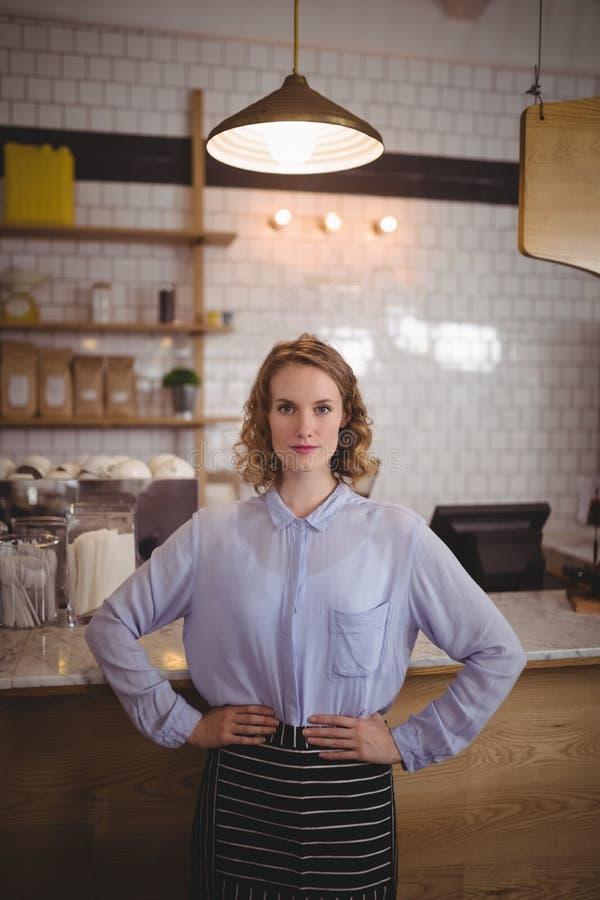 Portret van zekere jonge mooie serveerster die zich met handen op heup bevinden royalty-vrije stock foto