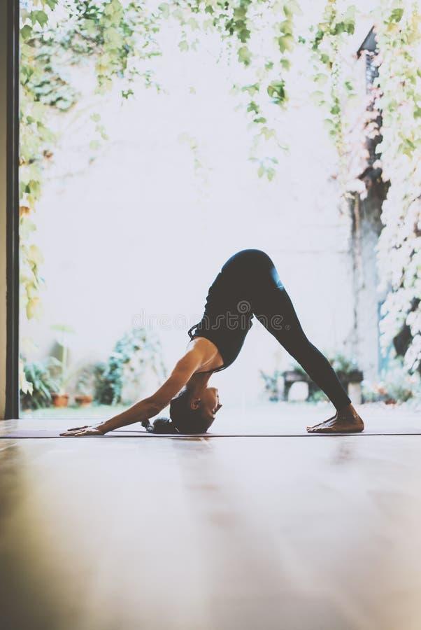 Portret wspaniałej młodej kobiety ćwiczy joga salowy Piękny dziewczyny praktyki adkho-mukkha-shvanasana w szkoleniu zdjęcie stock