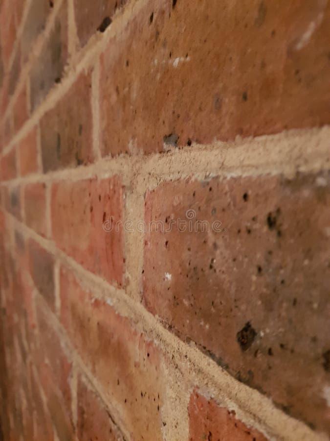 Portreta Brickwork zdjęcie royalty free