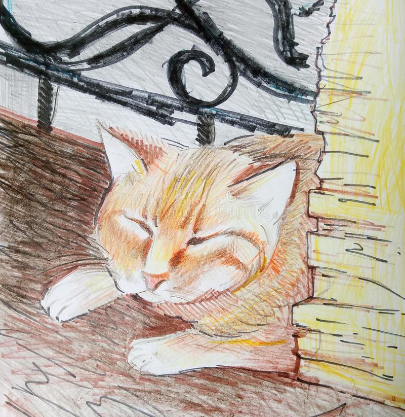 Portreta czerwony kot salowy royalty ilustracja
