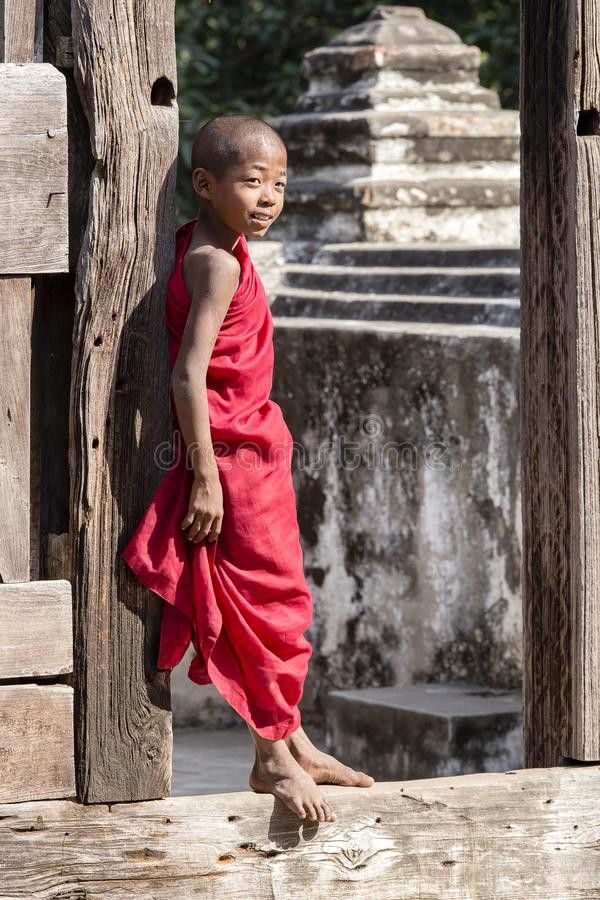 Portreta michaelita młoda pozycja i patrzeć Shwenandaw monaster Myanmar, Birma zdjęcie royalty free