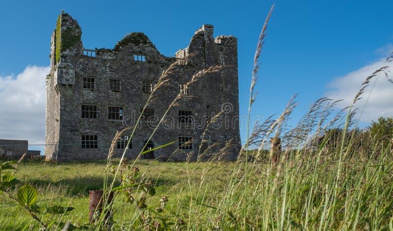 Portreta widok ogromne wspaniałe patrzeje ruiny irlandczyka kasztel w okręgu administracyjnym Ennis, Irlandia fotografia stock
