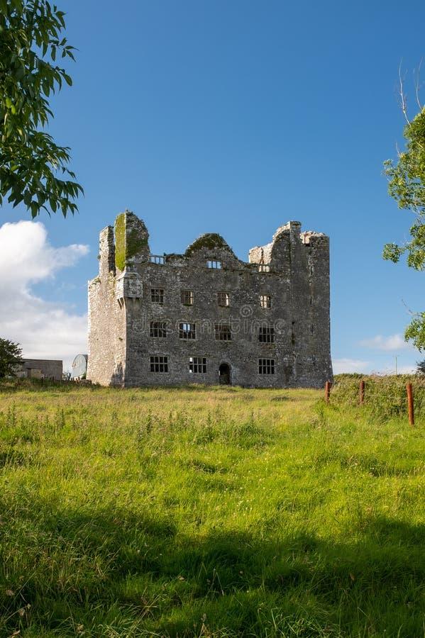 Portreta widok ogromne wspaniałe patrzeje ruiny irlandczyka kasztel w okręgu administracyjnym Ennis, Irlandia obraz stock