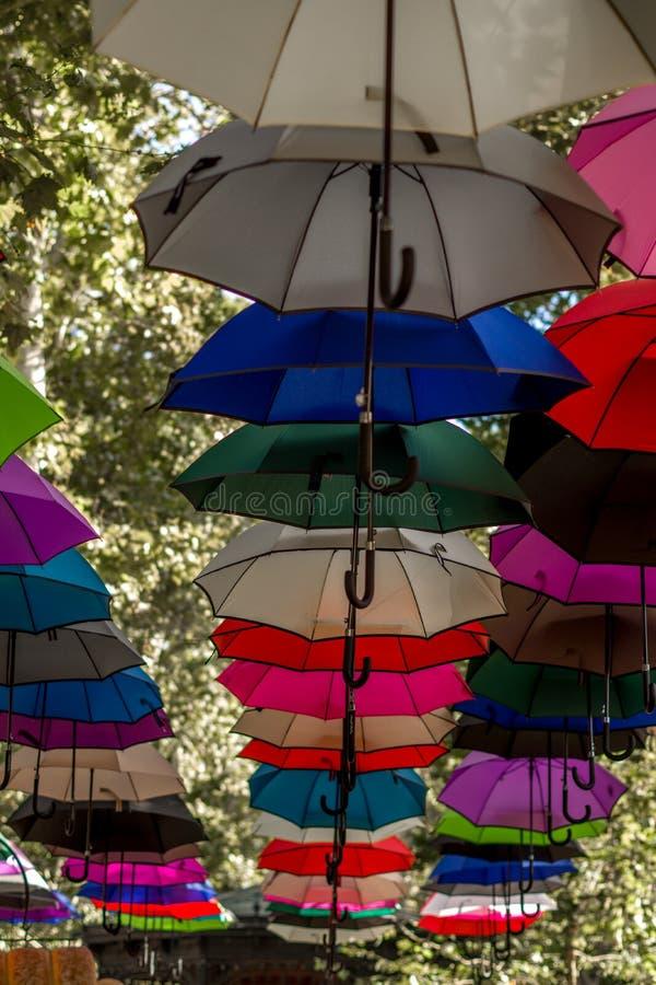 Portretmening van kleurrijke paraplu's die op de bomen in hangen royalty-vrije stock foto
