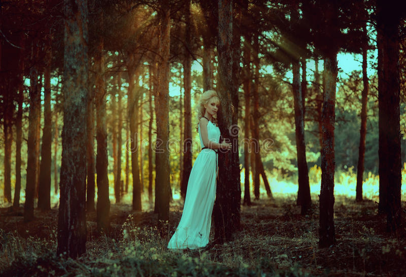 Portretvrouw in bos stock fotografie