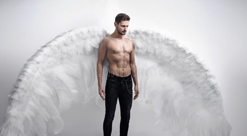 Portrtait красивого, серьезного изолированного ангела - стоковое изображение