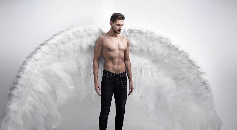 Portrtait of a handsome, serious angel - isolated stock image